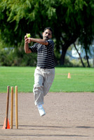 Oracle Beehive Cricket Semi-Finals