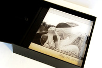 Wedding Album examples